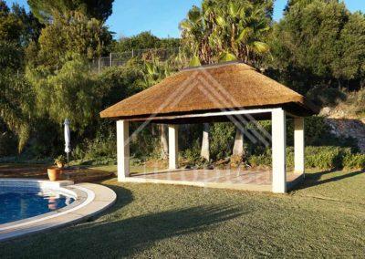 Zona estilo tropical en jardin y piscina