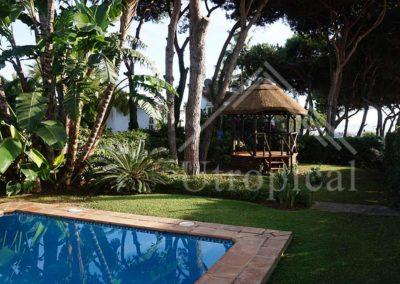 Crear zona para comer en jardín techo tropical