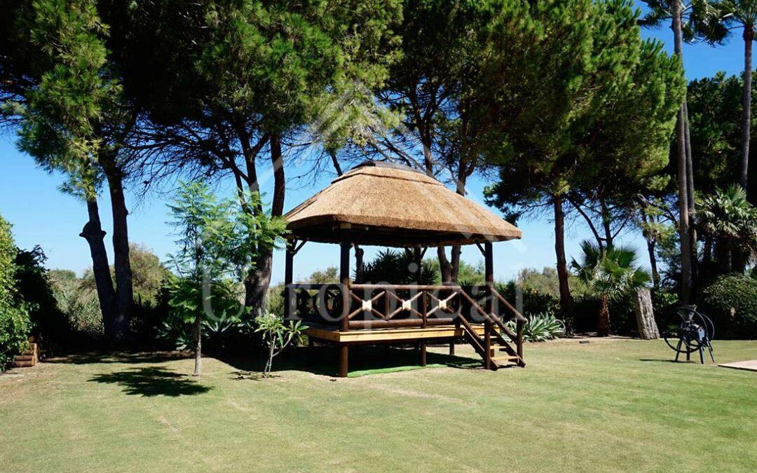 Diseño de tejado tropical cubierta de junco